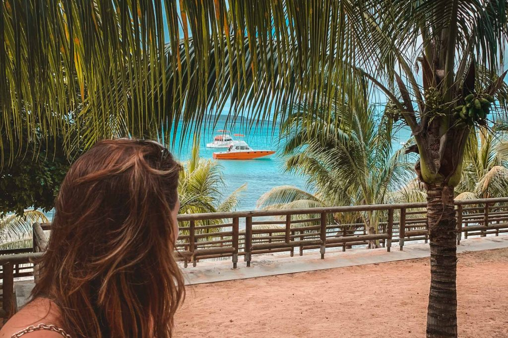 Bain Boeuf, Palmtrees, tropical island